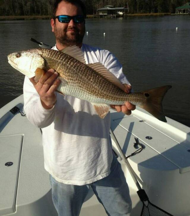 Photo gallery for Fort morgan fishing charters
